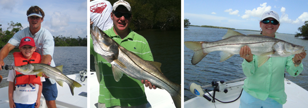 Fort Myers Snook Fishing Charter Tours