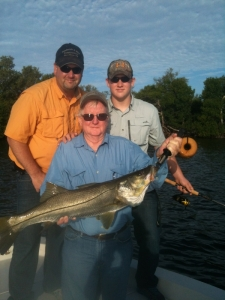 Family Snook
