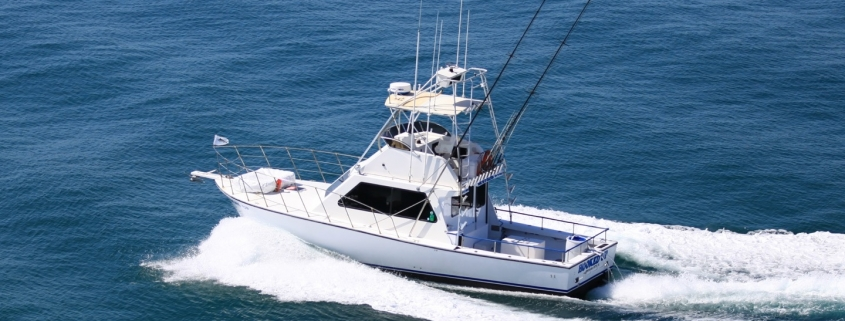 Reasons You Should Hire a Fishing Charter